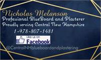 Professional BLUEBOARD and Plastering